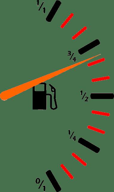 optimización-macronutrientes-randle