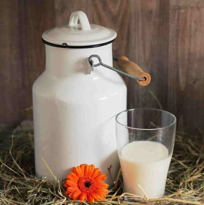 La gran benefactora leche