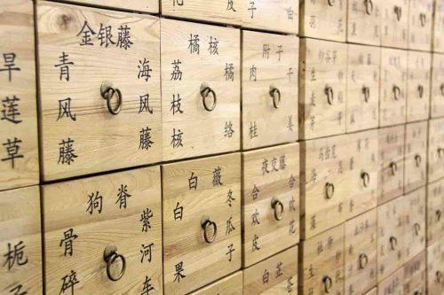 El reloj de los órganos según la medicina China